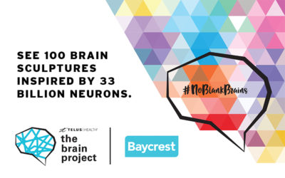 The Brain Project—